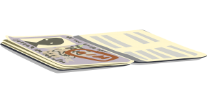 A passport visa, H1b immigration