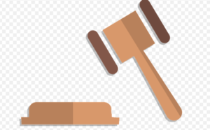 law gavel, immigration