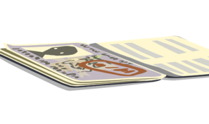 visa page on passport, immigration